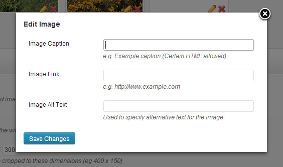Nivo Slider image options